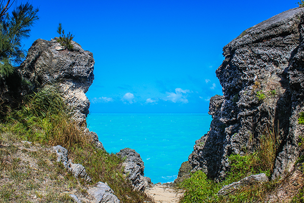 Bermuda blazes the trail